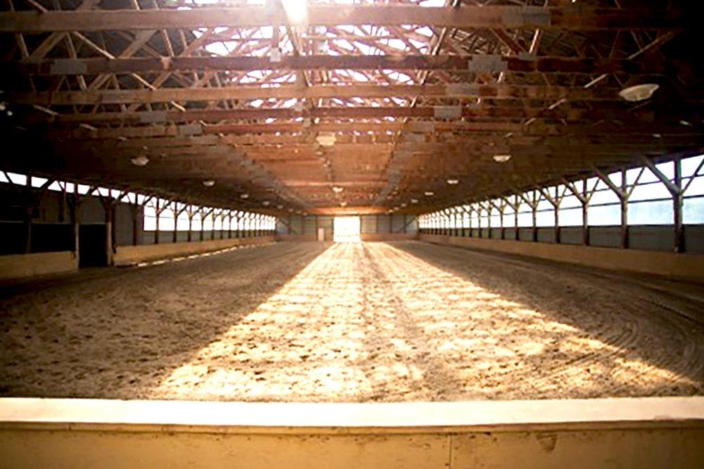 indoor arena copy
